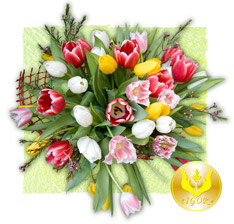 "Bouquet ""the Waltz of Tulips"""